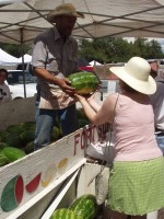 Farmers Market Watermelon