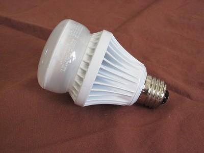 "LED Omnidirectional ""Bulb"""