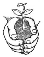 Plant in Hands sketch